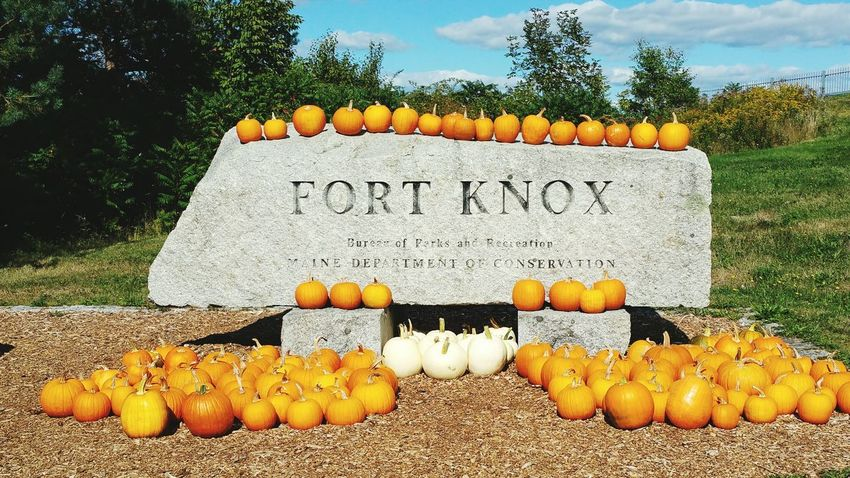Fort Knox Outdoors No People Pumpkins Pumpkin Patch Pumpkins Sign Memorial