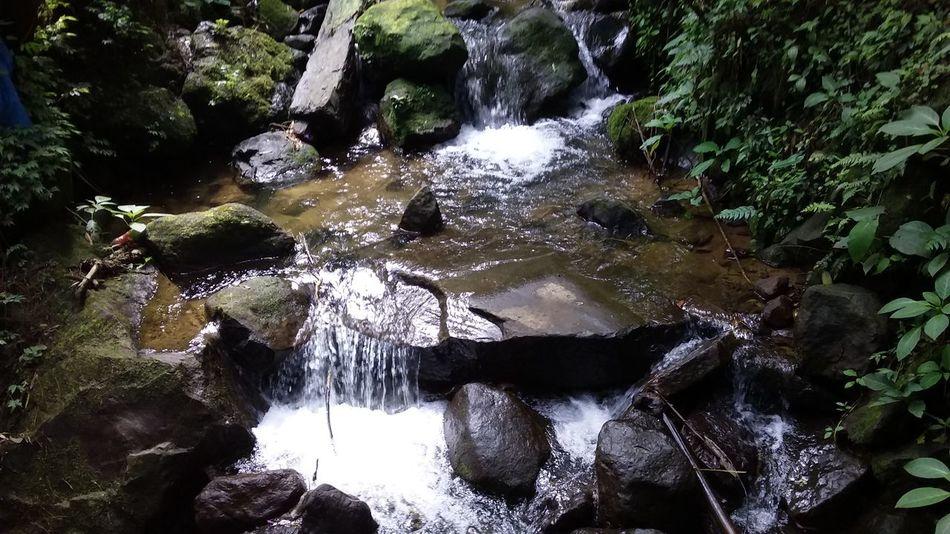 Seriously, airnya sangat jernih, dingin, dan segar. Cocok banget buat berendam atau sekadar main-main air 😊 Forest Beauty In Nature Nature Waterfall Fresh Breathing Space