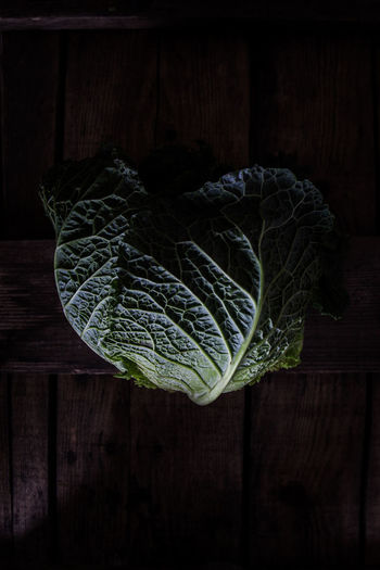 Directly above shot of cabbage on table