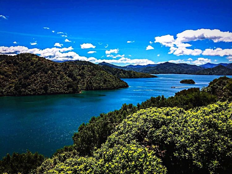 Newzealand Newzealandphotography Idyllic Blue Scenics Landscape Sea Outdoors Tranquil Scene Beauty In Nature Travel Destinations No People Sky Tranquility Nature Summer Tree Mountain Vacations Day Picton  Sounds Madmoon