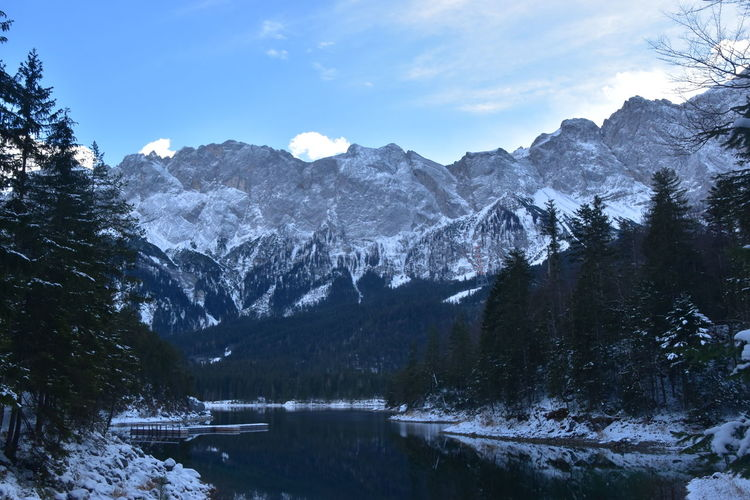 Mountain Winter Cold Temperature Scenics - Nature Snow Beauty In Nature Tree Mountain Range Tranquil Scene Sky Tranquility Water Nature Plant Non-urban Scene Environment Lake No People Snowcapped Mountain Outdoors Mountain Peak Zugspitze Eibsee Bergsee Berge