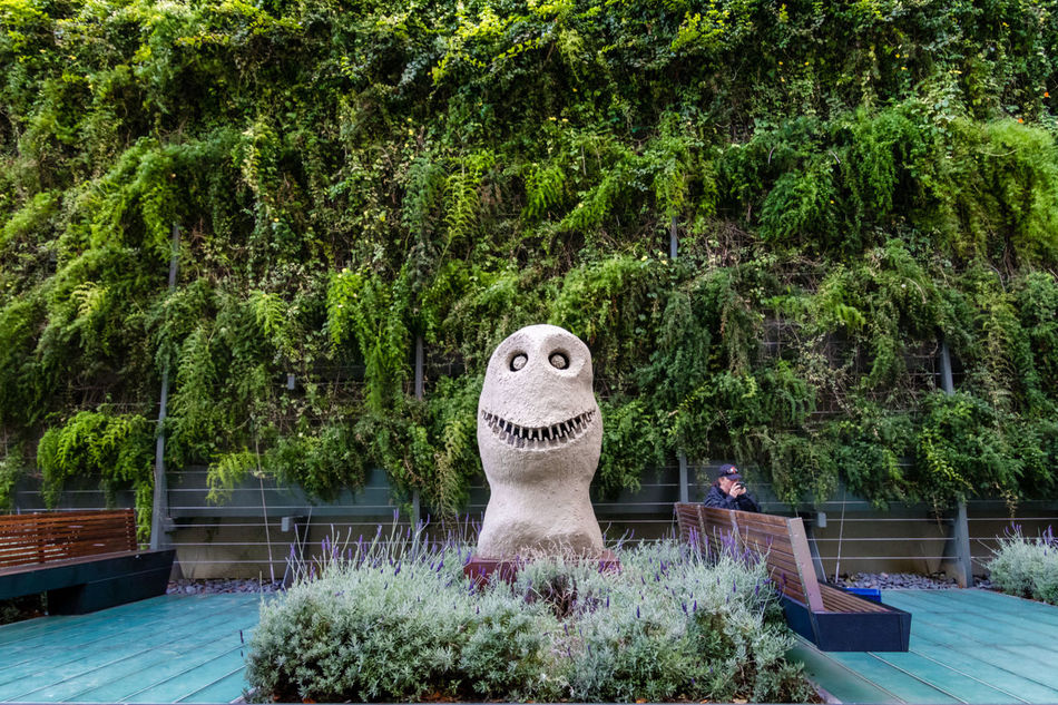 I Just Want to Fit In Akward Smile  Green Creepy Garden Greenery Misfits Open Space Peaceful Sculpture Smiling Face Teeth