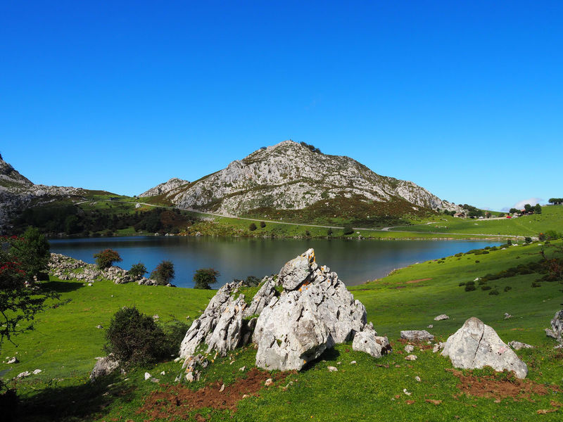 Landscape of Enol Lake in Covadonga Lakes, Asturias - Spain Lagos De Covadonga Sightseeing Touristic Travel Blue Clear Sky Copy Space Covadonga Enol Lake Grass Lago Enol Lake Lakes  Landscape Mountain Nature Outdoors Picturesque Rock - Object Scenics Summer Tourism Tranquil Scene Tranquility Water