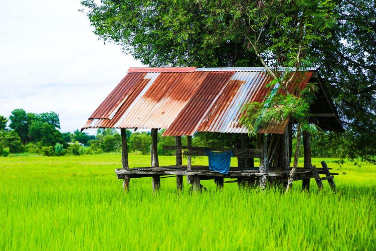 Lifeguard hut on field against trees