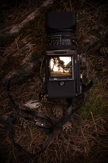 Tilt image of camera on field by tree at night