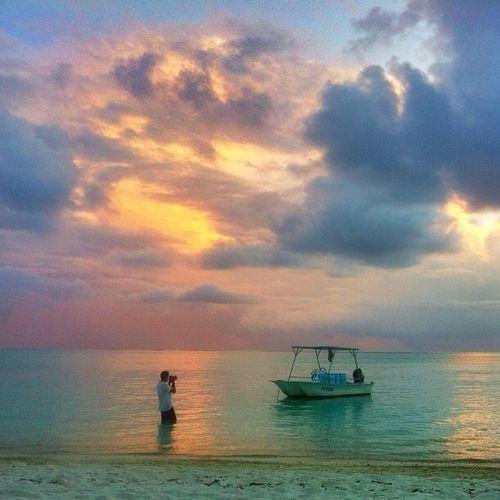 Photographer's paradise On The Beach Bora Bora  Beach Paradise