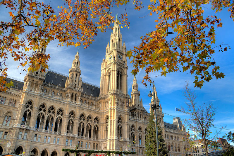 Architecture Austria Blue Building Exterior Built Structure Capital Cities  City City Life Day Growth Low Angle View Nature No People Outdoors Sky Tall - High Tourism Travel Destinations Tree Vienna
