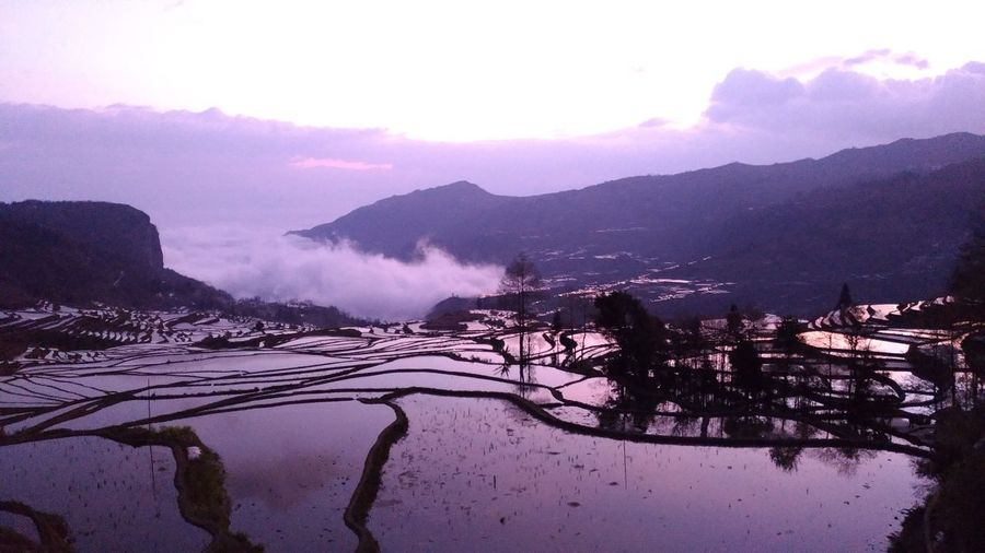 Water Nature Sea Outdoors No People Beauty In Nature Power In Nature Day Sky Rice Field Morning Morning Light Morning Sky Sunrise