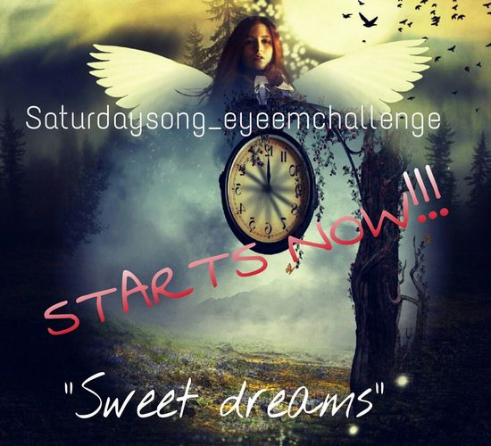 "Hallo dear friends☺☺The saturdaysong_eyeemchallenge is now open. The theme is ""Sweet dreams"" by Eyurythmics. The song can you find here https://www.youtube.com/watch?v=qeMFqkcPYcg. I hope you will show me your dreams!Good luck and don't forget to tag your photos with Sweet❤dreams Saturdaysong_eyeemchallenge and the rules you can find here Saturdaysong_eyeemchallenge_rules To My Friends That Connect Tadaa Community EyeEm Best Shots Eye4photography  Getting Creative Taking Photos"