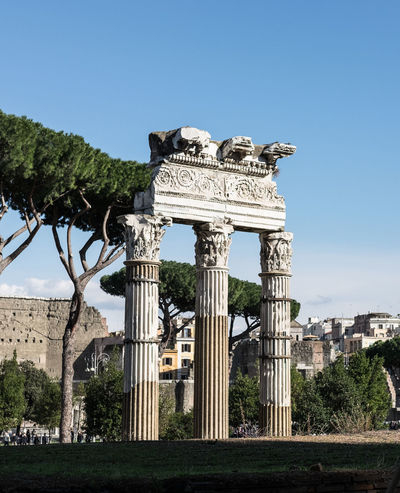 Ancient Ancient Civilization Architectural Column Architecture Building Exterior Built Structure Clear Sky Colonne Day Fori Imperiali History Low Angle View No People Old Ruin Outdoors Ruderi Sky Tourism Travel Travel Destinations Tree