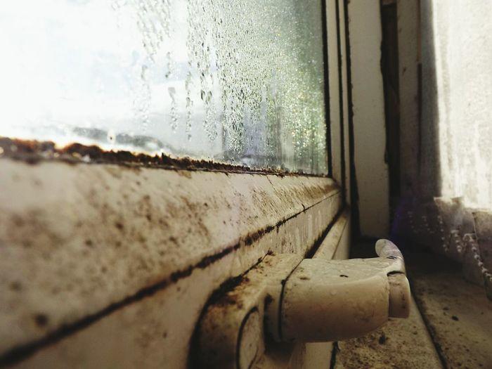 Showcase: November Window Detail Mould Ryton