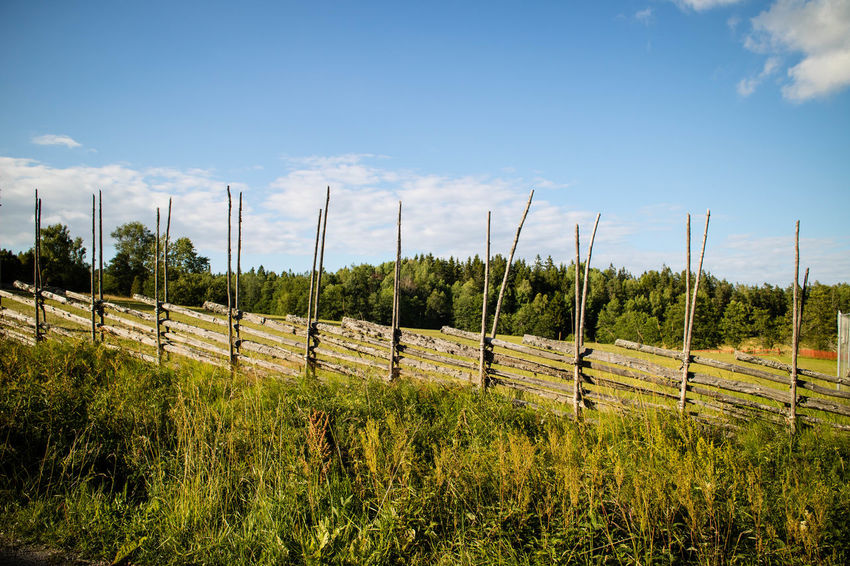 Beauty In Nature Cloud - Sky Day Fence Field Grass Growth Landscape Nature No People Outdoors Rural Scene Scenics Sky Tranquil Scene Tranquility Tree