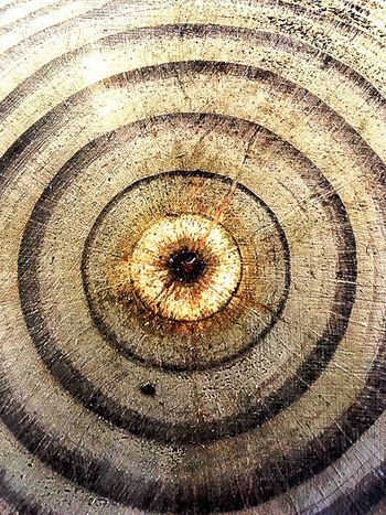 Wood project Full Frame Backgrounds Pattern Close-up No People Circle Geometric Shape