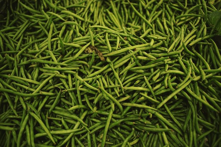 Market fresh green beans. Going To Market Fresh Produce Priime