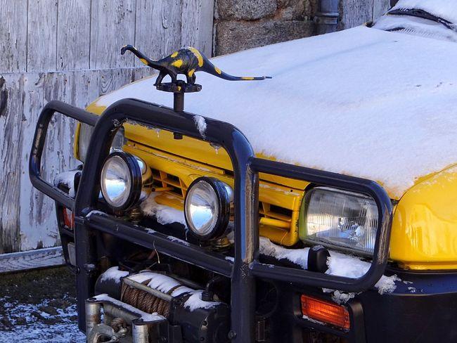 Dinosaur Jurasic Park Car Yellow Range Rover France Limousin