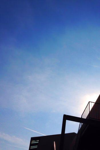 長い長い飛行機雲が飛び交う。明日は雨かな。早くコメント欄が直りますように… Sky 願い
