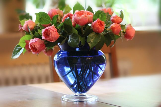 Flower Vase Freshness Table Indoors  Bouquet Fragility Flower Arrangement Bunch Of Flowers Arrangement Glass - Material Selective Focus Still Life Roses Rose - Flower Blue Vase And Flowers Focus On Foreground Depth Of Field Beauty In Nature