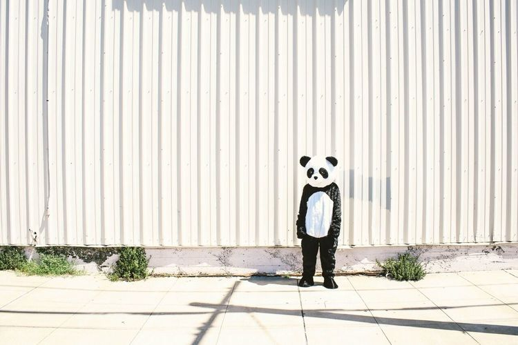 Person In Panda Costume Standing On Sidewalk