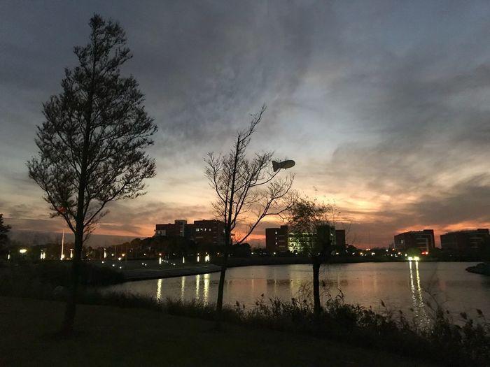 MySchool Ecust Cloud - Sky Night Nature Crafted Beauty
