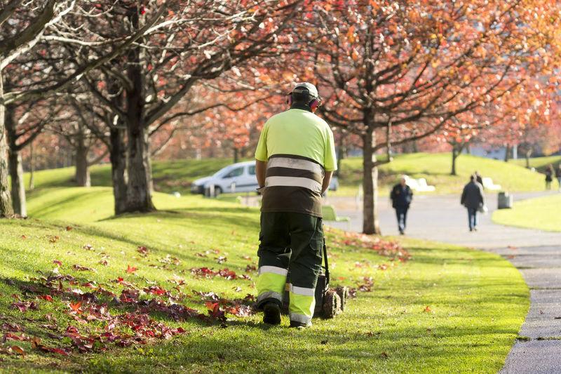 Rear view of people walking in park