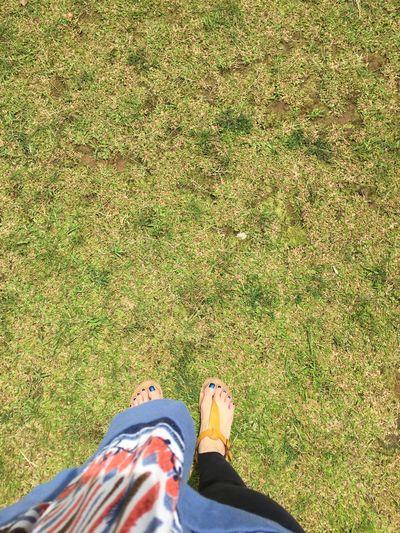Nailpolish Blue Grass Green