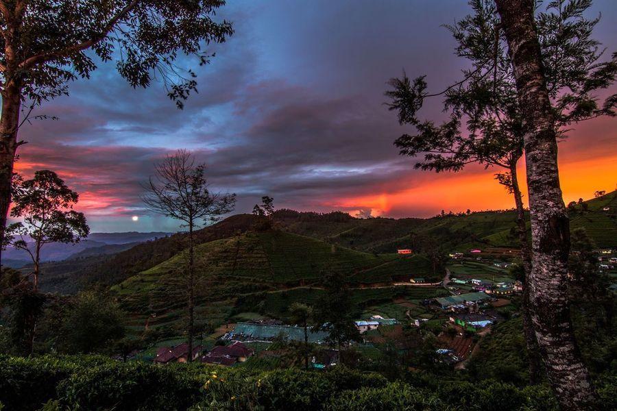 Heritance Tea Factory, sunset, Sri Lanka Tree Sunset Sky Cloud - Sky Nature No People Beauty In Nature Scenics Built Structure Outdoors Architecture Mountain Sri Lanka EyeEmNewHere EyeEm Best Shots - Nature