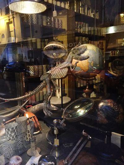 Tirex Paris Le Marais Paris, France  Reflets