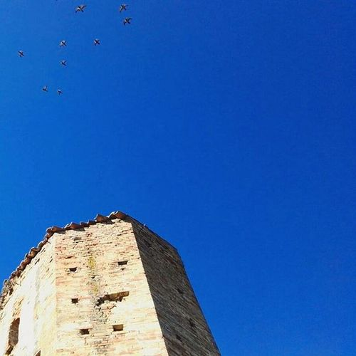 🐦 Fly over ··· 🐦 Myabruzzo