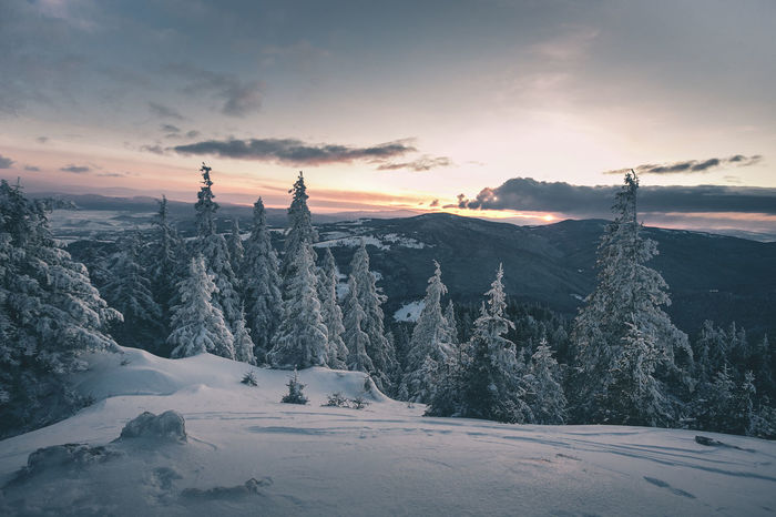 Beauty In Nature Cloud - Sky Cold Temperature Covering Environment Idyllic Mountain Nature No People Non-urban Scene Outdoors Plant Scenics - Nature Sky Snow Snowcapped Mountain Sunset Tranquil Scene Tranquility Tree Winter