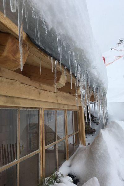 Winter Frozen Cold Temperature Snow