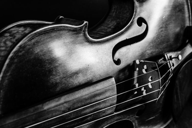 Close up of my violin. Arts Culture And Entertainment Black And White Black And White Photography Black And White Violin Blackandwhite Blackandwhite Photography Close-up Desaturated Music Musical Instrument Musical Instrument String Playing String Instrument Woodwind Instrument