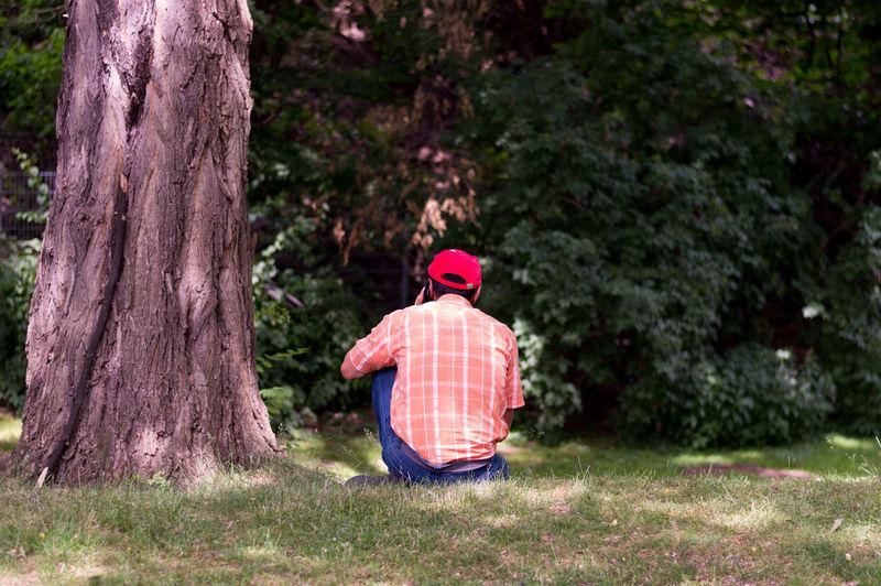 Rear view of man sitting on field by tree
