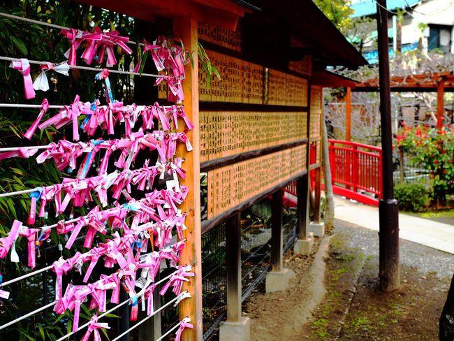 Shrine Of Japan Built Structure Street Photo Streetphoto Streetphotography Street Photography Tokyo Street Photography Japan Photography Millennial Pink Olympus OM-D E-M5 Mk.II