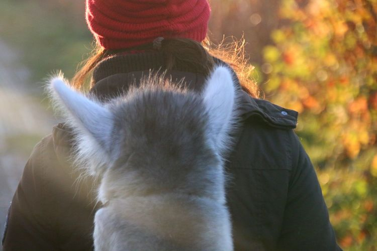 Rear view of woman wearing hat outdoors during autumn