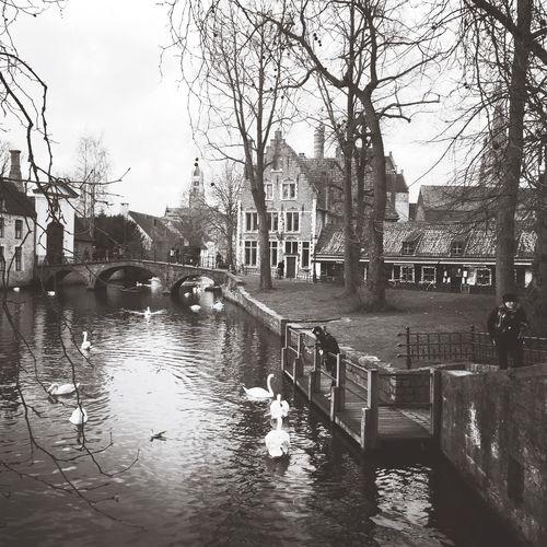 Bruges First Eyeem Photo