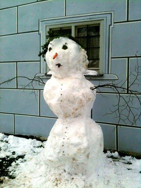 Winter Winter Wonderland Snow Snowman Giant Schneemann