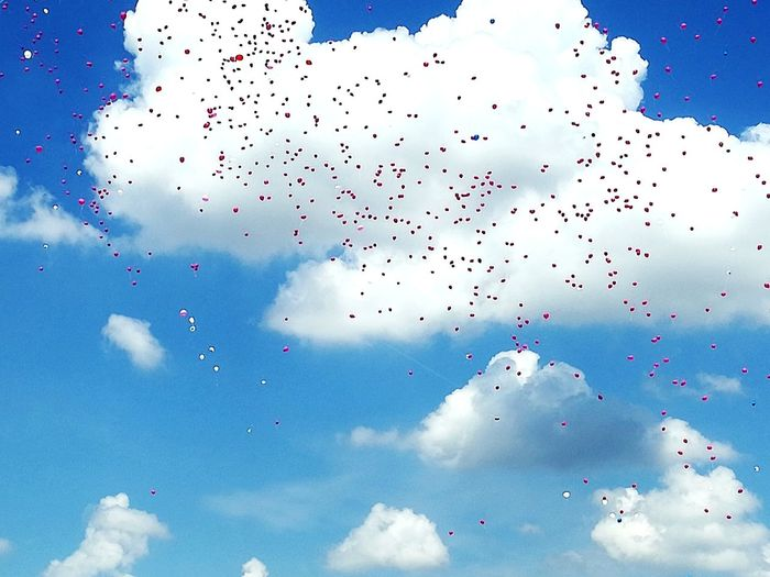 woman!💓 Woman Race For The Cure Pink Color Sky Cancer Victory Bird Flying Technology Mid-air Flock Of Birds Blue Multi Colored Bird Of Prey Motion Sky