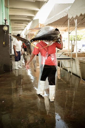 A man carrying a fifty kilo yellowfin tuna. The Photojournalist - 2017 EyeEm Awards Indoors  People Philippines Freshness Action Market Eyeem Philippines Fresh Raw Seafood Tuna Fish Market Yellowfin Tuna Fish Monger Working Day Occupation Fisherman Fish Carrying Business Stories Real People Wet Full Length Men Motion Lifestyles Water Standing