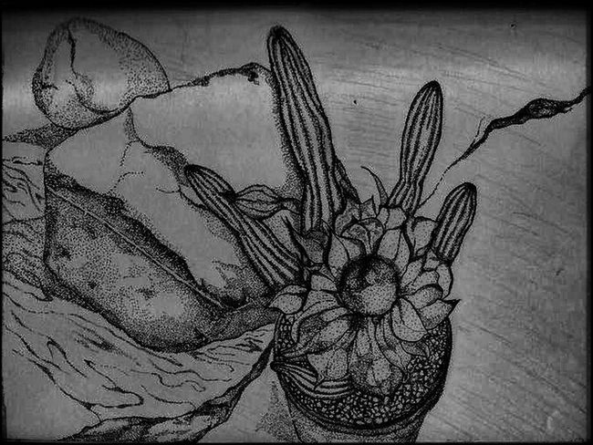 """Taking Photos Check This Out Enjoying Life Expressions Eyemphotography EyeEm Gallery Nature_collection Blackandwhite Photography Black And White Collection  EyeEm Best Shots - Black + White EyeEm Bnw EyeEm Best Shots Pen And Ink Stippling#artwork#illustration#pen#pencil#blackandwhite#drawing Artistically Artsy My Artwork """"Stipple the Cactus"""" , artist me jen west, signed within the picture."""