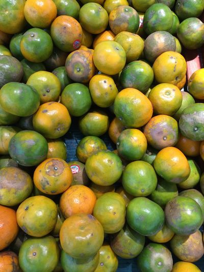 Orange - Fruit Healthy Eating Food Fruit Food And Drink Large Group Of Objects Abundance Market Green Color Wellbeing Full Frame Freshness For Sale Retail  Backgrounds No People Market Stall Day Still Life High Angle View Close-up Outdoors Sale