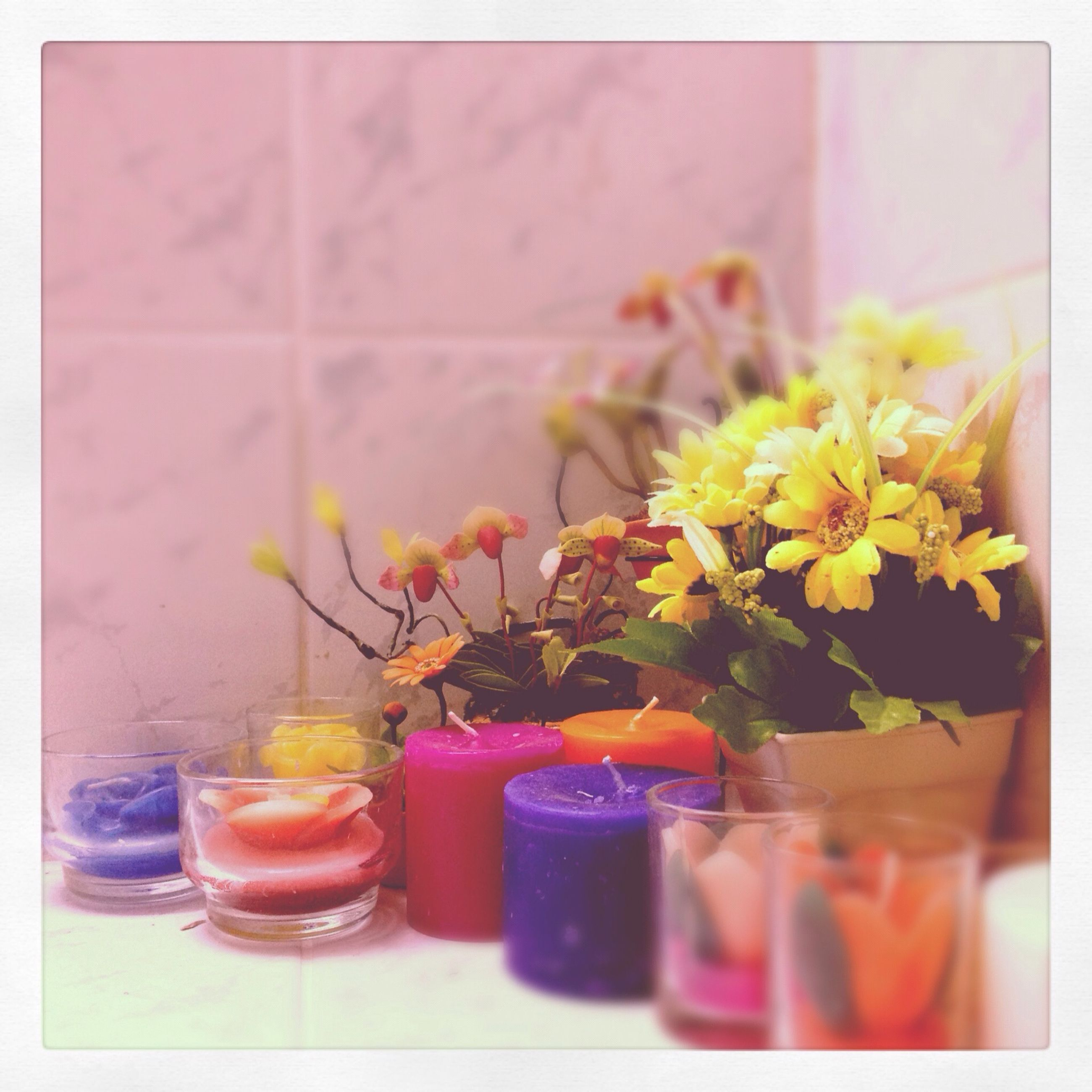indoors, flower, freshness, transfer print, vase, table, auto post production filter, still life, glass - material, potted plant, food and drink, fragility, close-up, home interior, jar, transparent, bottle, flower pot, no people, plant