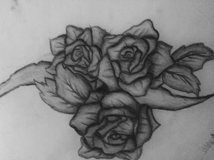 Roses Drawing Byme Blackandwhite Biancoenero Art