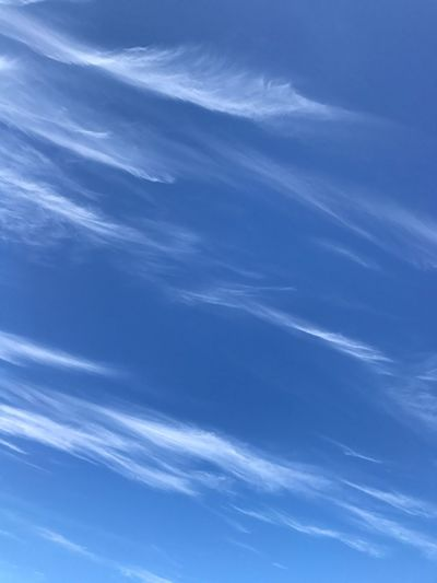 Low Angle View Blue Nature Sky Beauty In Nature Day No People Cloud - Sky Outdoors