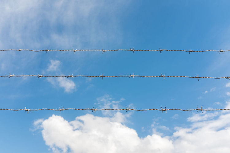 Barbed wire against sky Sky Low Angle View Blue Cloud - Sky No People Day Wire Nature Barbed Wire Metal Outdoors Protection Fence Boundary Safety Cable Security White Color Barrier Backgrounds