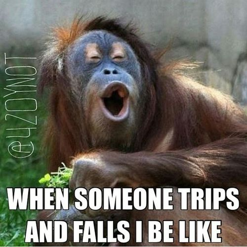 I know we've all done that. Thatface Isonpoint Oops LOL