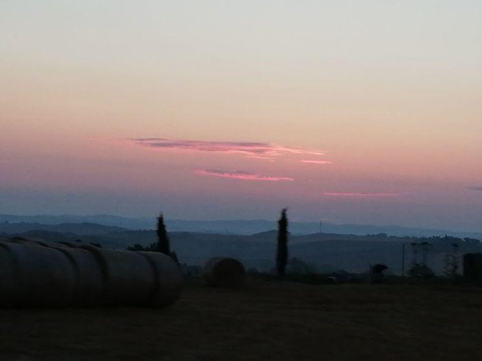 Sunset Tree Silhouette Fog Sky Landscape