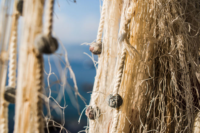 Fishing Net Hiking Nature Pier Porto Pidocchio (Liguria) Traveling Vacations Adventure Close-up Drying Fishing Net Floats Horizon Over Water Knotted Knotted Rope Liguria Mountains Outdoors Sea View Through