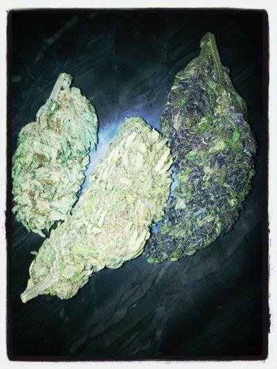SMOKING LIKE A BO$$ YA DIGG