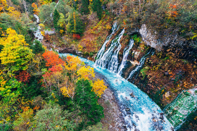 Daisetsuzan Autumn Scenics - Nature Tree Beauty In Nature Water Plant Waterfall Nature Forest Environment Change Flowing Water Motion No People Land Non-urban Scene Long Exposure Rock Day Outdoors Flowing Stream - Flowing Water Running Water Power In Nature