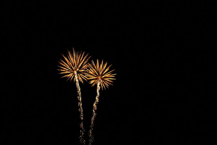 Firework London Ealing Bonfire Night Bonfire 🎇 Bonfire&friends&beers Fireworksphotography Firework🎆 FireWorkDisplay